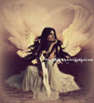 *warrior angel*
