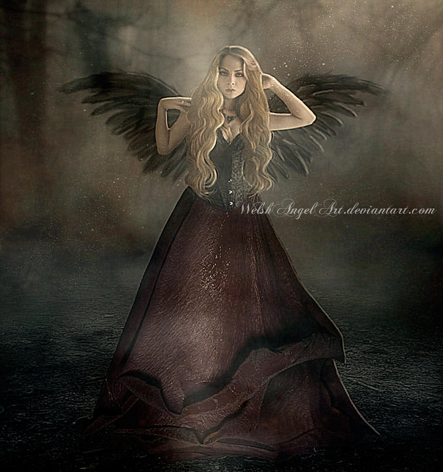 *dark rose* by WelshAngelArt
