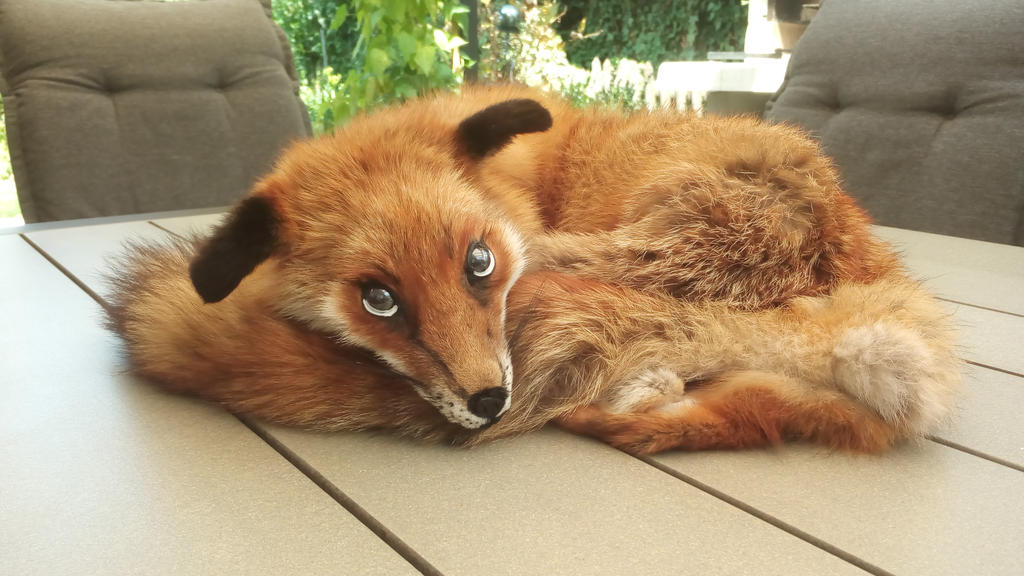 Realistic Fox doll by Lalingla