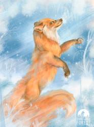 Fox Jump in snow