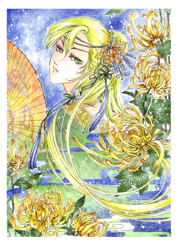 May Chrysanthemum by thepoppy