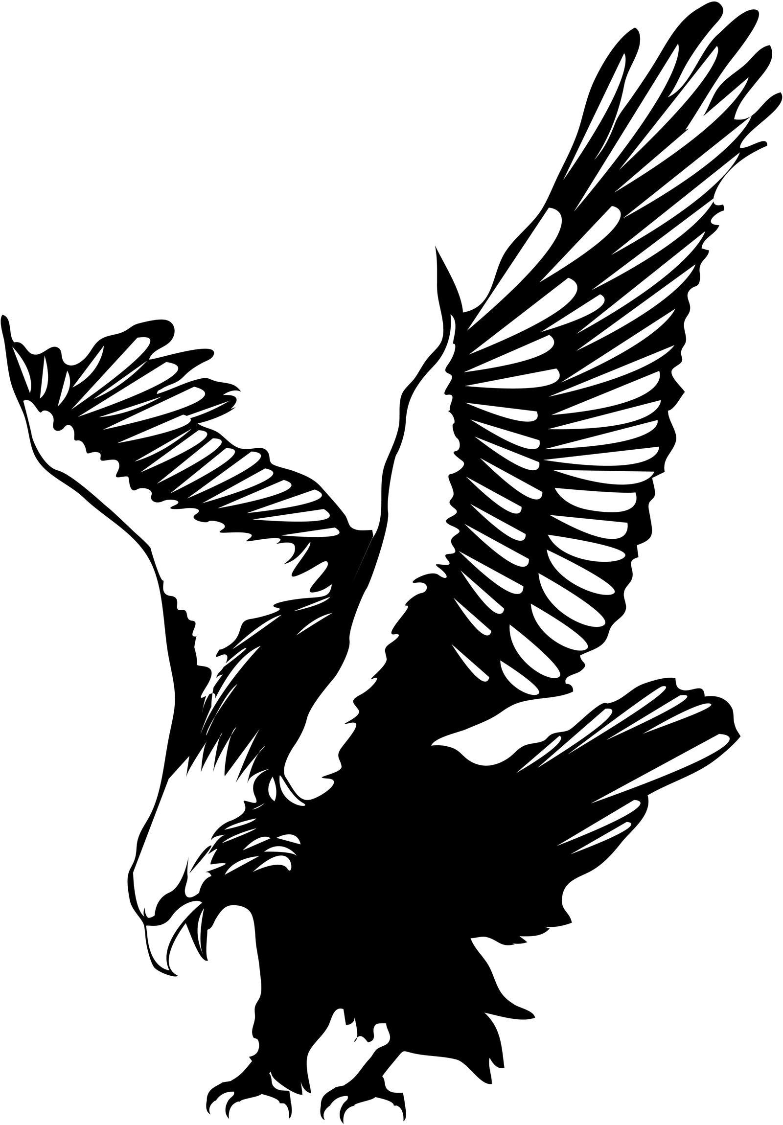 Vector Flying Eagle by macinivnw on DeviantArt