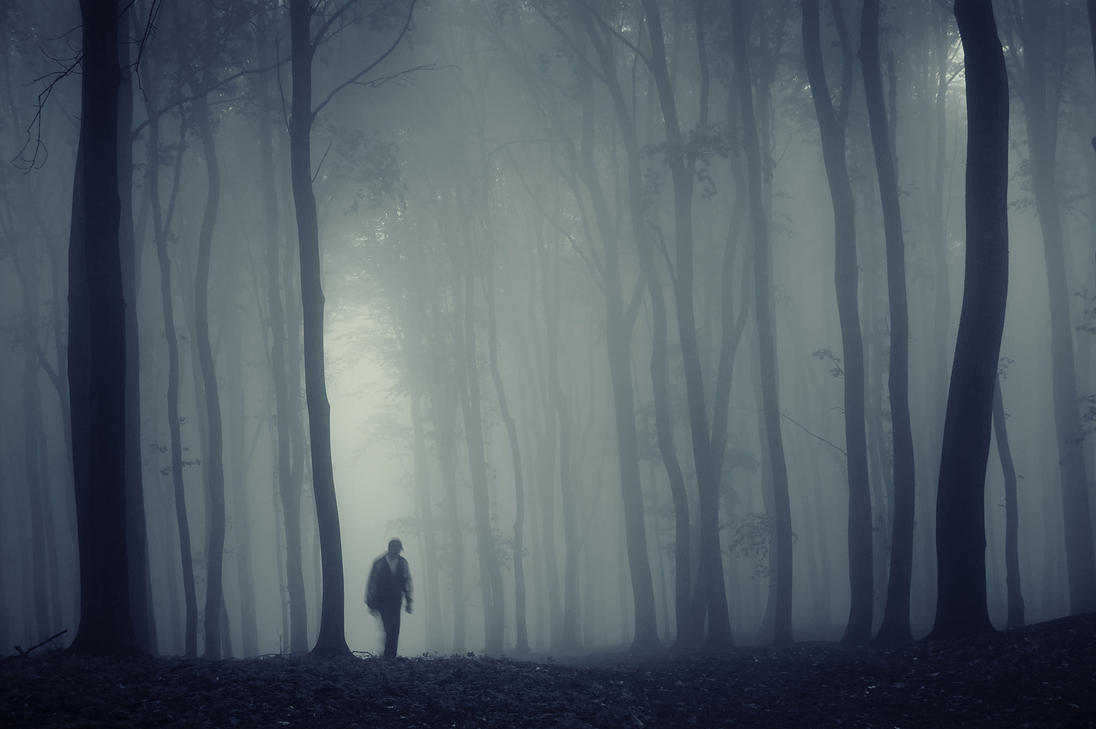 man_in_a_dark_forest_with_fog_by_macinivnw-d68mxhc.jpg (1096×729)
