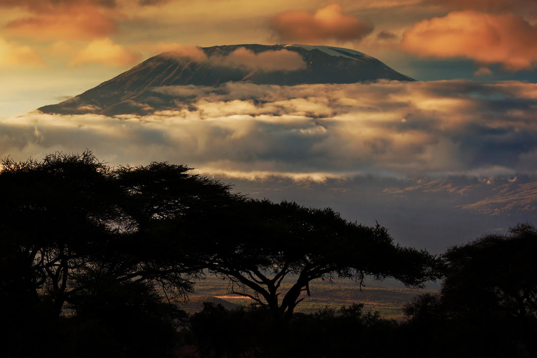 critical essay on the snow of kilimanjaro Snows of kilimanjaro essay-snows of kilimanjaro essay  critical essay  a new study has shown that kilimanjaro, the beautiful snow-capped mountain in africa,.