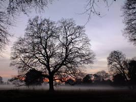 Purple Mist by EmMelody