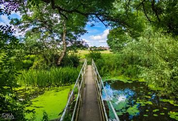 Bridge Of Memories by EmMelody
