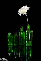 Four Bottles by EmMelody