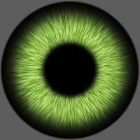 iris texture by Zuggamasta