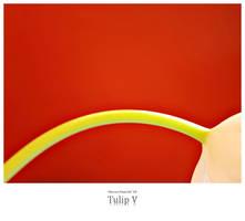 Tulip V by signmeupscotty