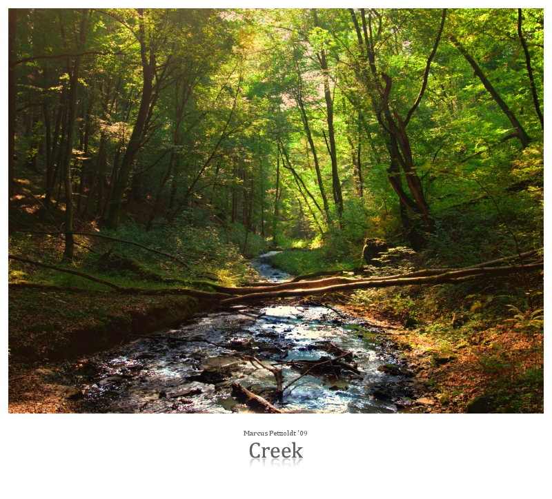 Creek by signmeupscotty