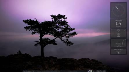 Fluxbox on Linux Mint 12 by ElderVLaCoste