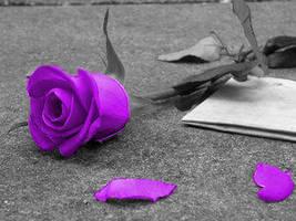 Purple Rose by RazorxXxKisses