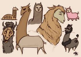 Llamas... llamas... everywhere...
