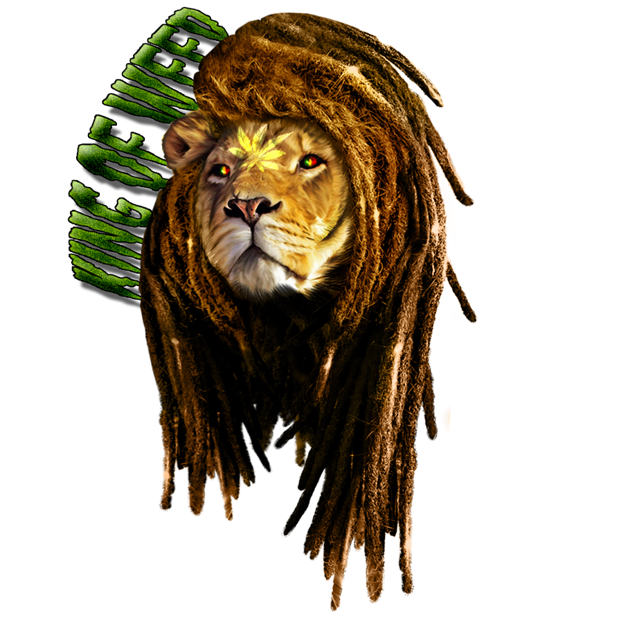 Rasta lion face sketch - photo#12
