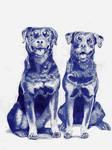 Best friends by DrawingNynke