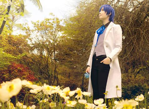Vocaloid Camellia - Eomecon
