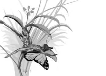 FunaSutra - The Butterfly by yerduf