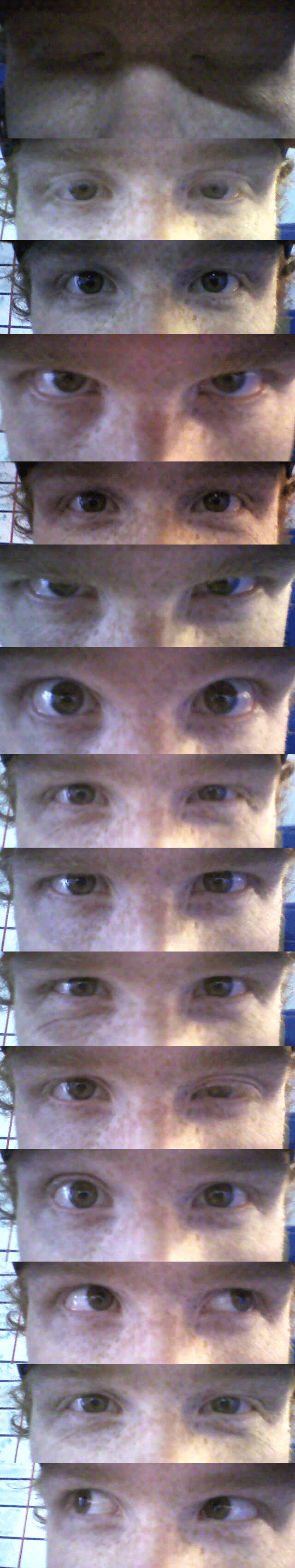 eye-study-reference
