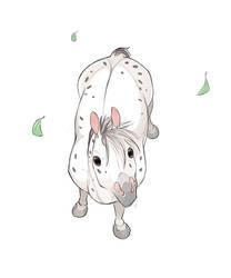Horse Son