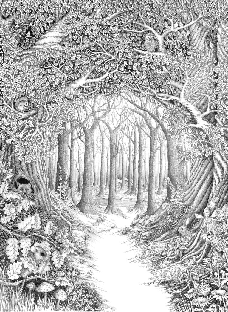 black and white coloring pages for adults - enchanted forest by ellfi on deviantart