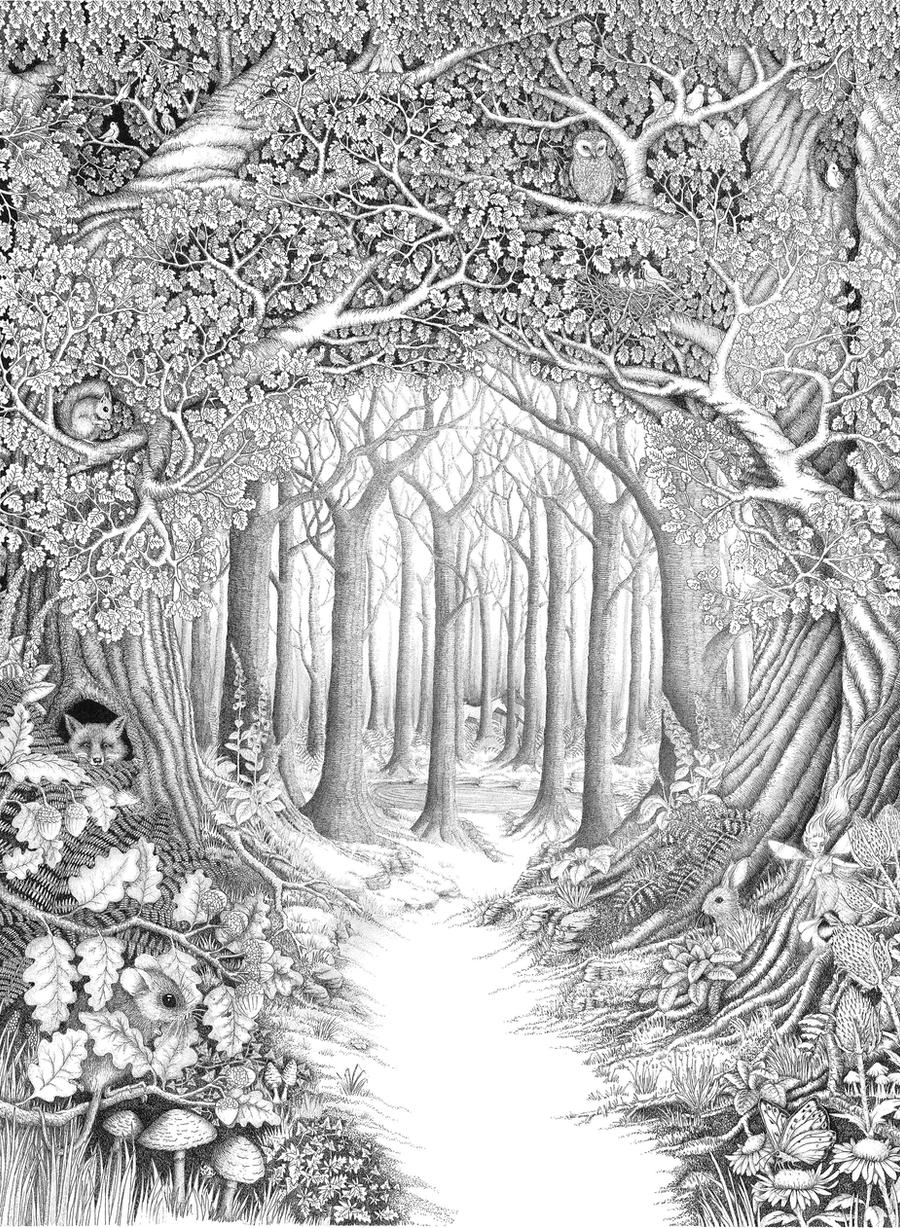 Coloring Pages Enchanted Forest