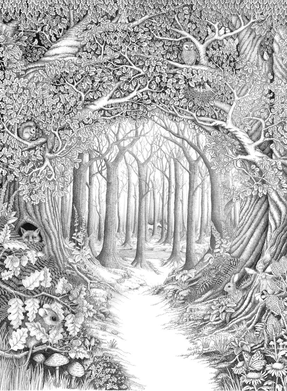 Enchanted forest by ellfi