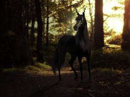 ravn by Tinkerhorse