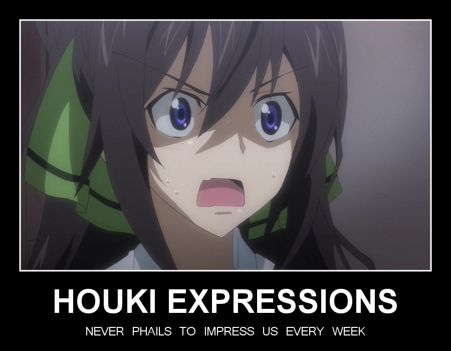HOUKI EXPRESSIONS by chaotrix