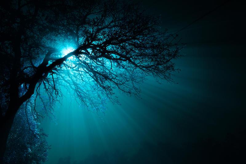 Swimming in a Fog
