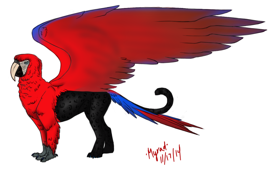 Scarlet macaw/panther gryphon by Myrad