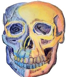 MundoMadness's Profile Picture