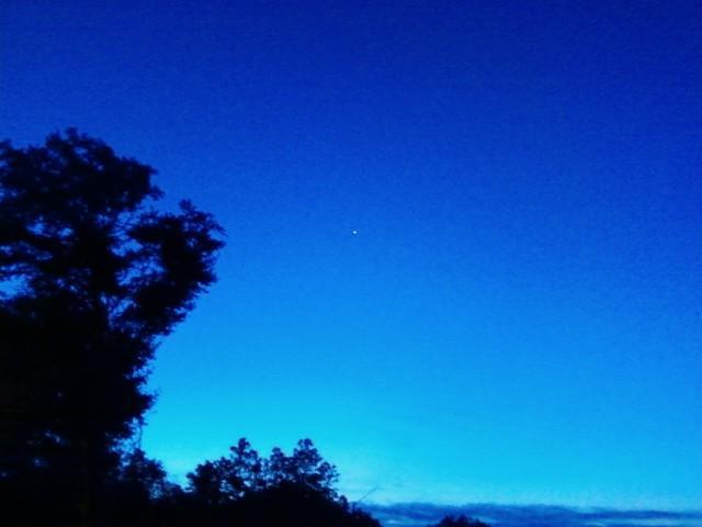 Morning Star by Kal-Venku