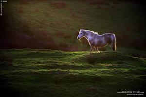 Ireland 02 by BlackdoG-MT