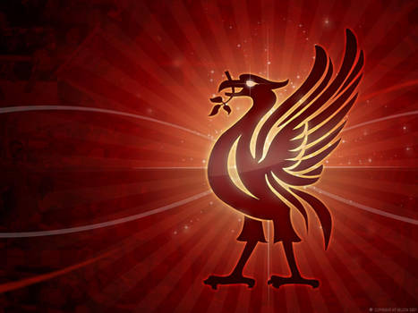 Liverbird Screensaver