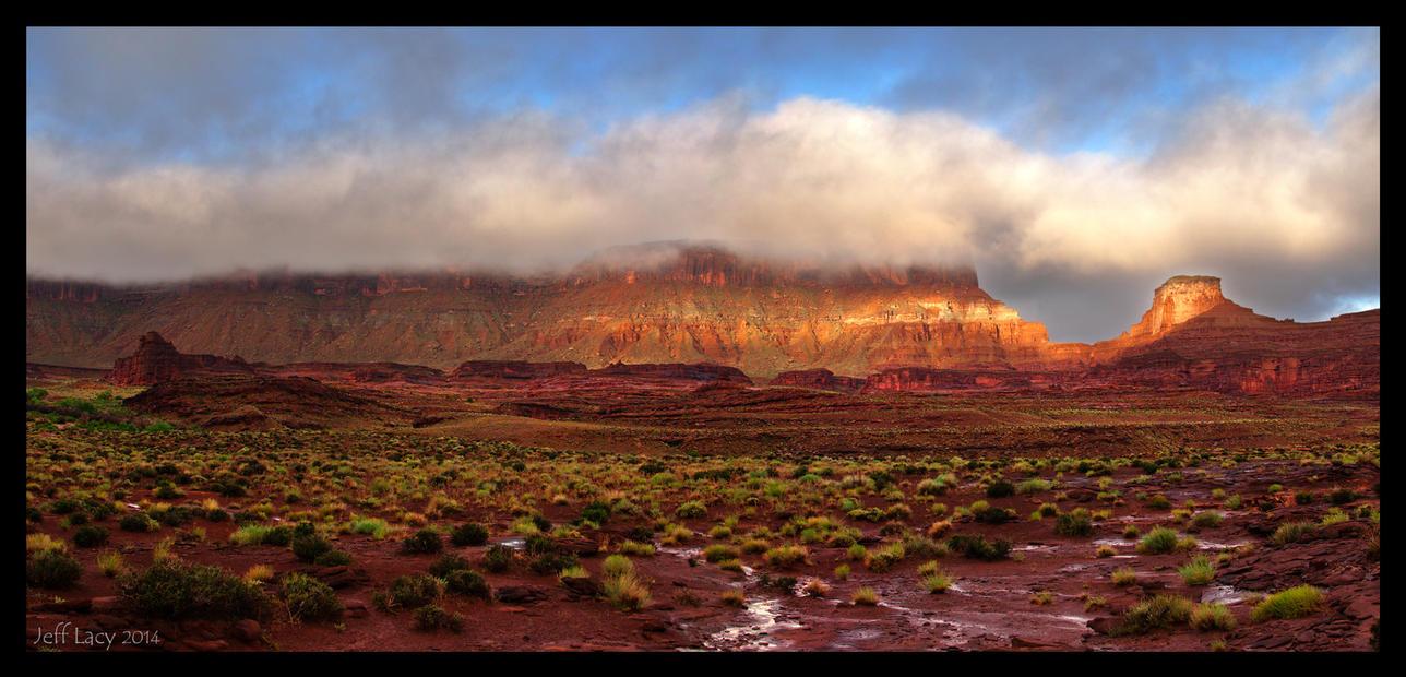 Wet Desert by wetdog969