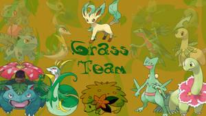 Pokemon 'Grass Team' by cozzie333