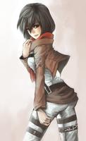 Shingeki no Kyojin - Mikasa by PhatOreo