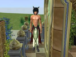 Volug Fire Emblem Sims by Prince-Stephen
