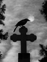 Quoth The Raven, Nevermore by Queen-of-spells