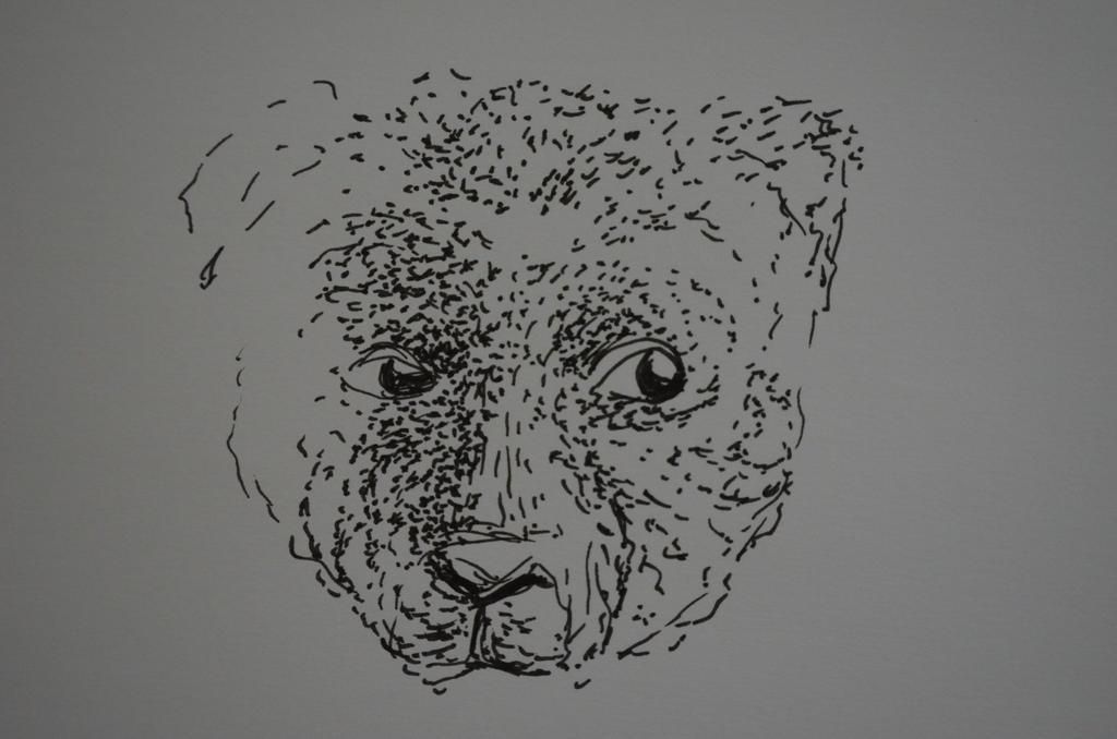 friendly bear by lizbeth-boo-nana
