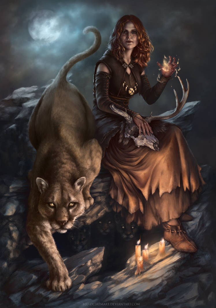GWENT card: Witch of Lynx Crag