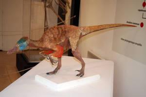 Variraptor print 3d by MichelFontaine27