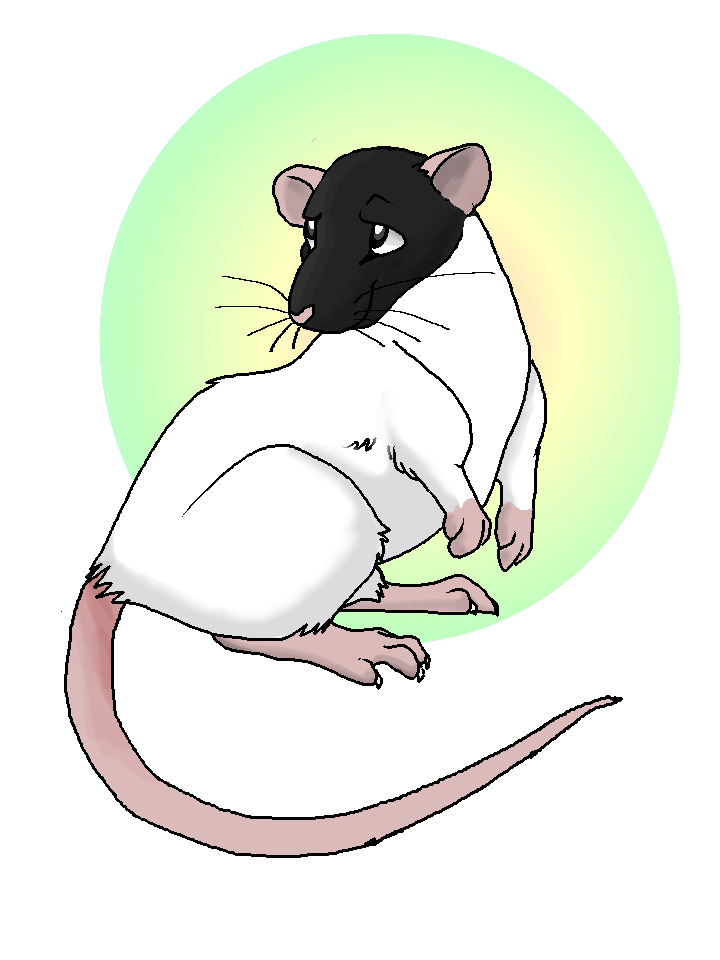Rat Commission by Windicious