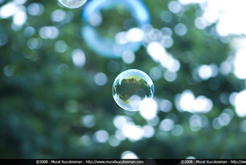bubbles by morad