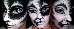 Alonzo Face Paint