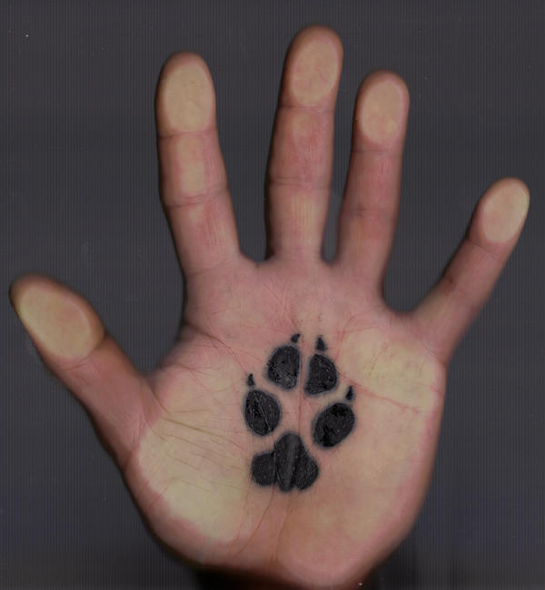 coyote paw print tattoo by ubunoir23 on deviantart. Black Bedroom Furniture Sets. Home Design Ideas