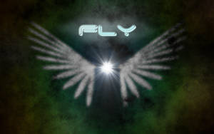 Fly -high quality version-