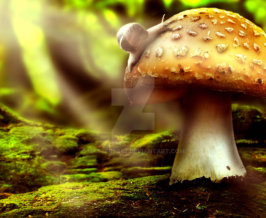 Little Slimey Life by Mysterys47
