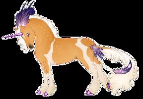 Boucle Unicorn Import B152: Marian-Boucle Unicorn by horsemad1521