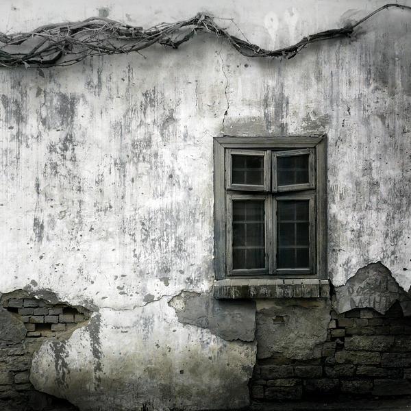 Teodor-Stanciu Tiberiu Winter_61_by_Pandemoneus
